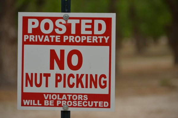 Most nuts are private property of their owners and subject to picking and adjusting from time to time