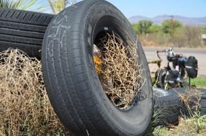 Tires & Tumbleweeds