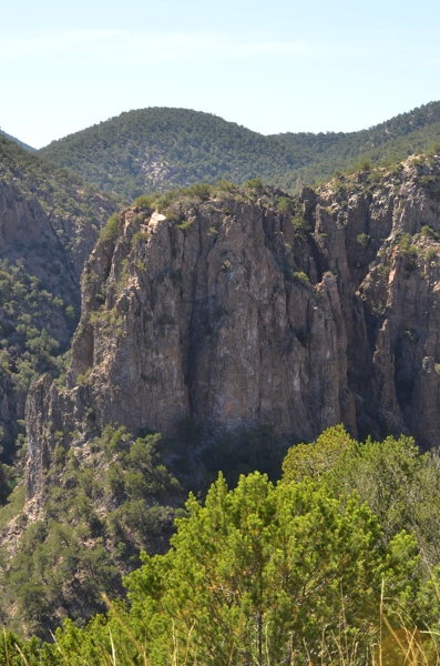 View from the road in Apache National Forest before a descent into hotter, drier parts of Arizona