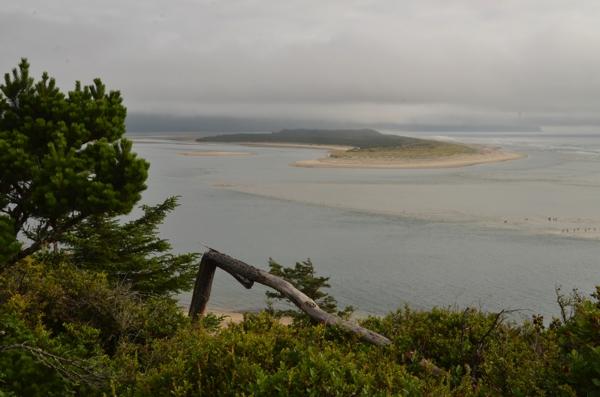Another vista along the Oregon coast