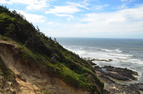The windswept coast