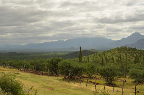 Another view of the green valley on our way to Loreto