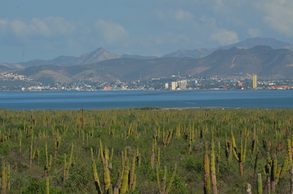La Paz in the distance