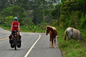 A foals first bicycle tourist