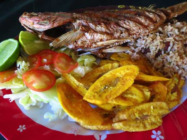 Red snapper, plantains and coconut rice