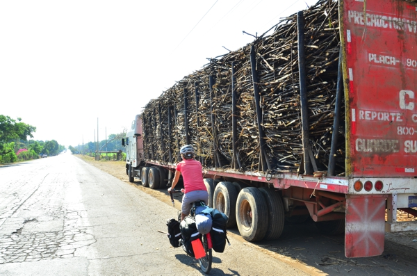 Sarah passing a truck loaded with harvested sugar cane