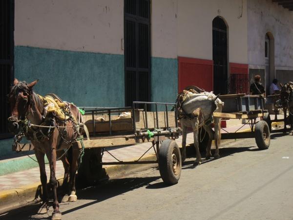 horse & wagon on the streets of Granada