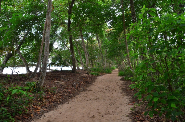 Cahuita National Park nature trail
