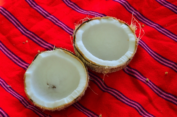 Thick, semi-dry coconut meat