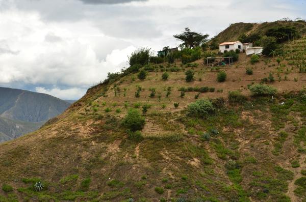 Hillside farm above Rio Cota