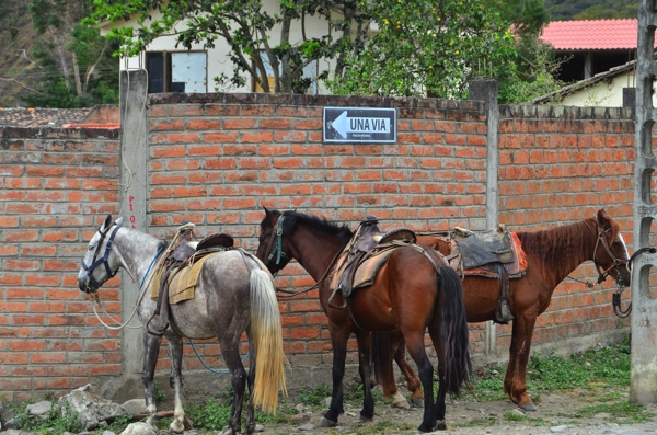 Vilcabamba street scene