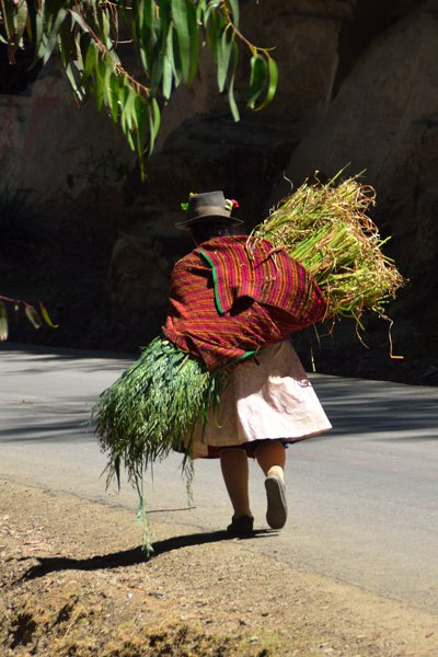 A woman carrying her goods to market