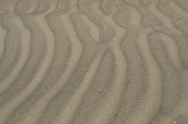 Yeah, more sand.  E.T., please abduct me.