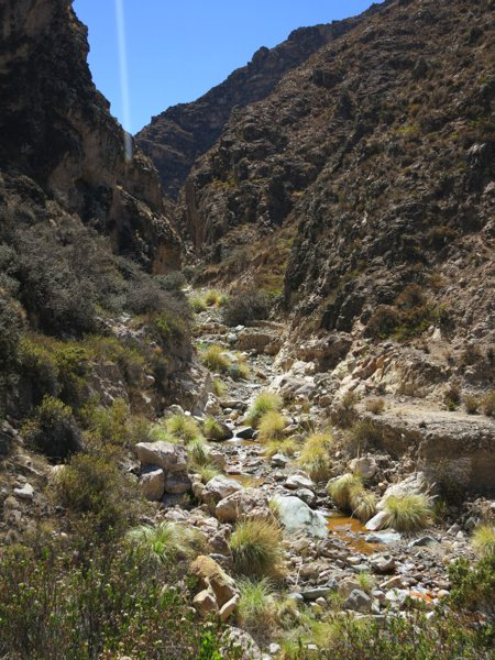 We cleaned up in this river in the morning (first bath since leaving Arica, 4 days ago)