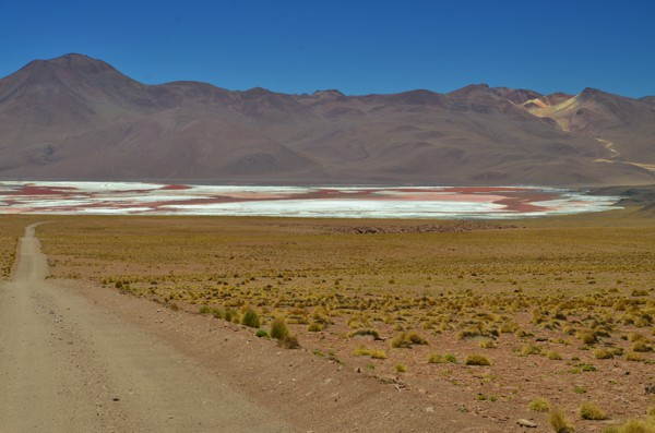 Laguna Colorada - a salt lake that gets its red color from the pigmentation of algae.