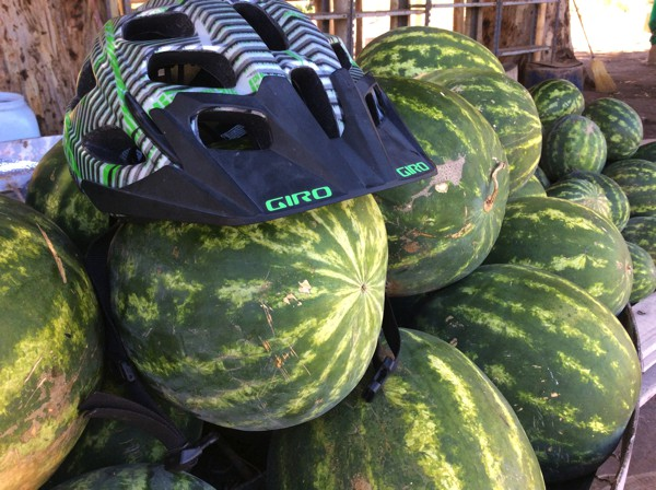 My helmet protects the melon.
