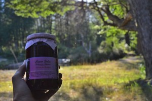 Fruit of the forest artisanal jam = yummy!
