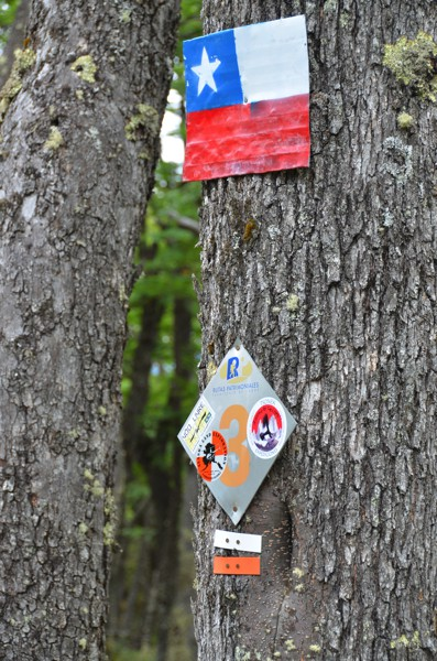A flag nailed to a tree in the woods reminding us we're still in Chilean territory.