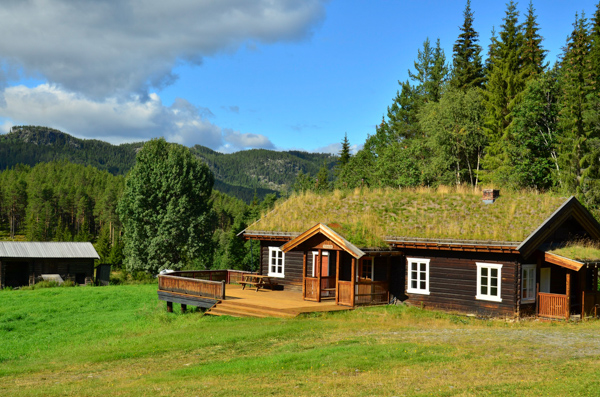 Green roofs are a common sight in Norway.