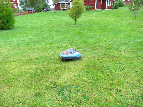 We were also entertained by the roomba lawn mowers that were quite popular.