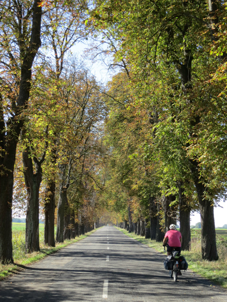 Tree lined roads of Poland. We rode through northwest Poland which is mostly flat agricultural land.