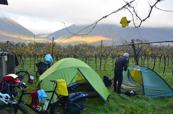 Camping in a vineyard.