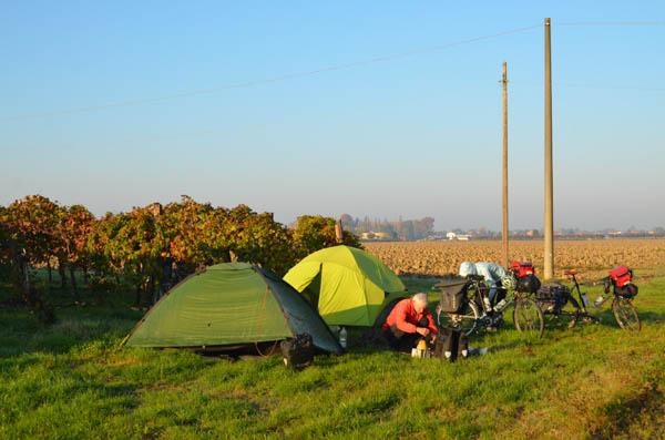 Camping on the edge of a vineyard.